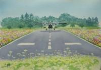 ドルニエ228 離陸(投稿用)